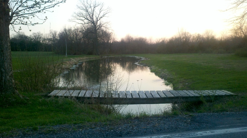Fishing Derby pond